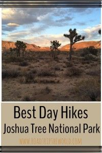 Joshua Tree National Park is a magical place!  Read about our favorite Family Friendly hikes in the park.