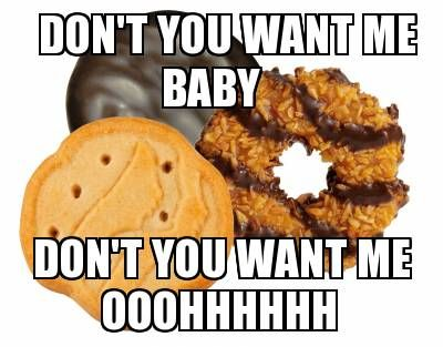 Don't You Want Me Baby Girl Scout Cookies Meme