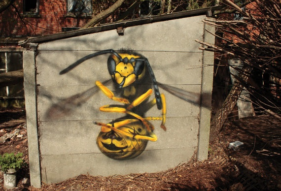 Wasp on concrete by Stein