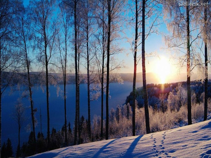 Sweden - snow, ski resorts, dog sledding, ice diving and climbing, ice fishing ans nsowmobiling