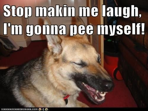 Image result for stop making me laugh i'm gonna pee