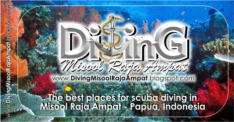 Dive center misool raja ampat :: The best places for scuba diving in Misool Raja Ampat, Papua. Indonesia
