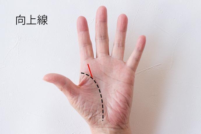 #手相 #占い #金運 #恋愛運 #開運 #スター刻印 #幸運線 #2017 #2017年 #happy #comorie #kansugi #コモリエ #お洒落 #check DIY #hand #woman #line #tutorial