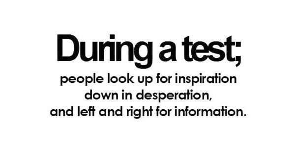 17 Best Exam Quotes Funny On Pinterest