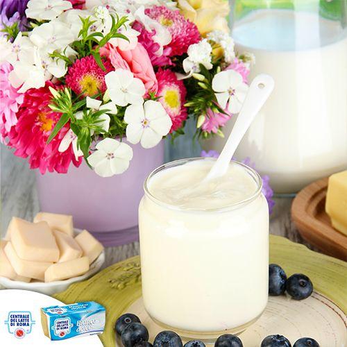 Il nostro #yogurt intero bianco dolce ha un gusto inconfondibile, vellutato e cremoso. Buonissimo da gustare anche da solo! http://www.centralelattediroma.it/prodotti/yogurt-intero-bianco-dolce/