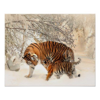 Tigers Poster - animal gift ideas animals and pets diy customize