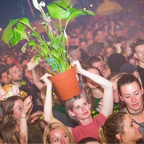 Bloempotkapsel. #Solar17 #Solarweekend #Festival #Bloemen #Bloemetjesbuiten #bloempotkapsel #Haircut #Flowers #Vaas #plant #groen #feest #festivallife #hoedan
