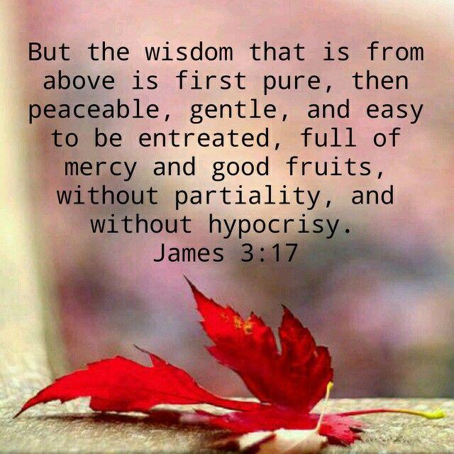 Image result for wisdom from above kjv