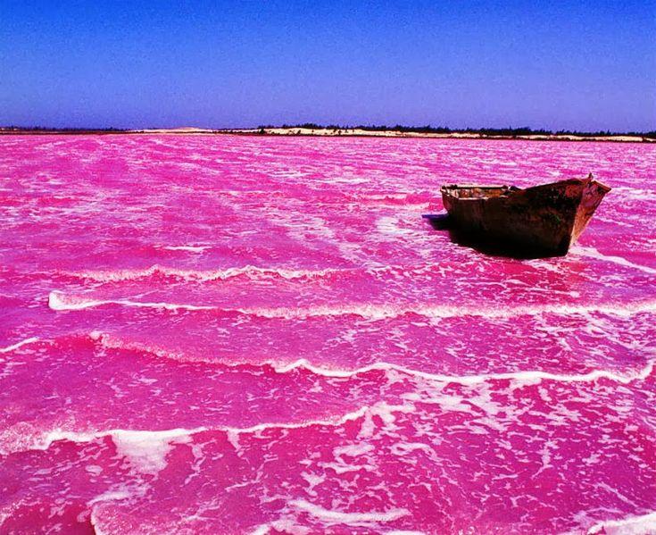 Lagos de color rosa :: CIENTÍFICOS EN EL AULA