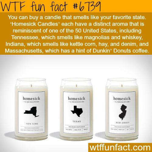 Homesick candles - WTF fun fact