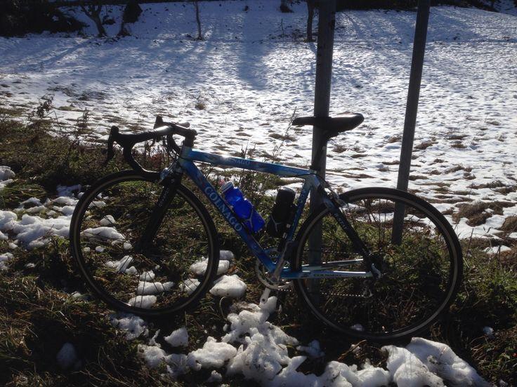 #PersonalTrainer #Bologna #allenamento #bicicletta #bici #Colnago #ciclismo