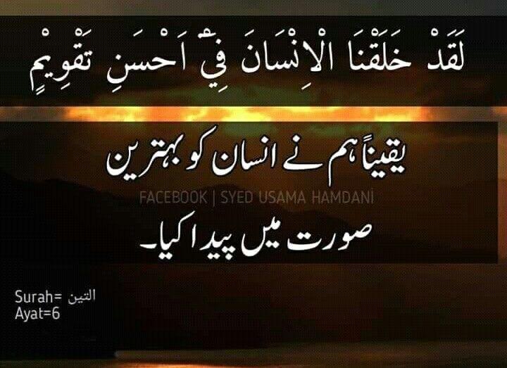 Pin By Munavver On Islamic World Islamic World Neon Signs Facebook 1