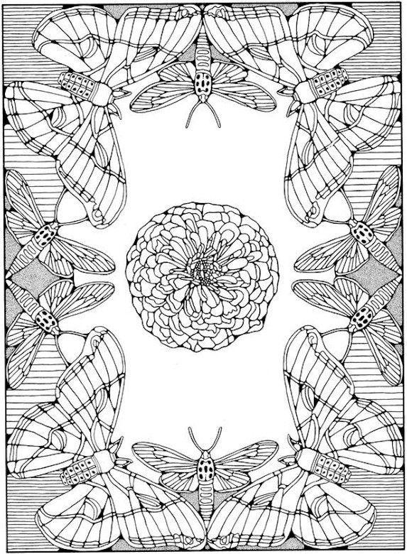 Coloriage De Papillon 1138 Imprimer