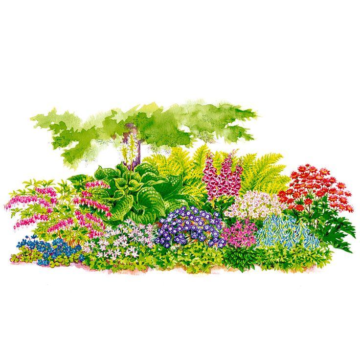die besten 25 pflanzen schatten ideen auf pinterest schattenpflanzen pflanzen f r schatten. Black Bedroom Furniture Sets. Home Design Ideas