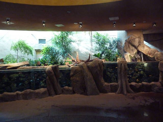 Best Calgary Zoo Images On Pinterest Calgary Zoos And Aquariums - The 12 best zoos in the world