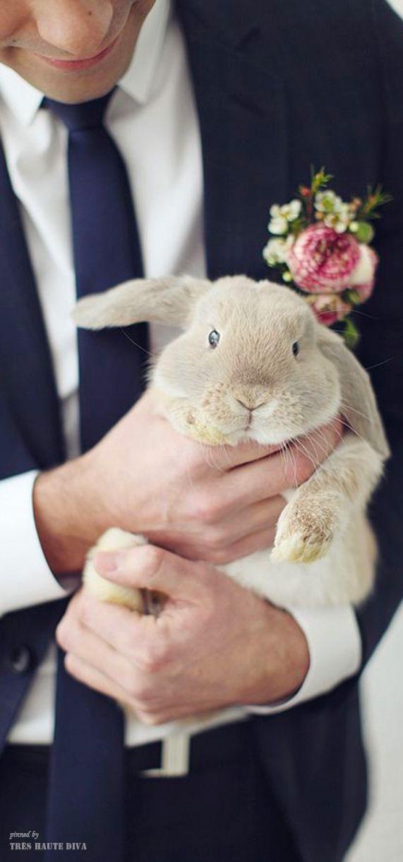 Wedding bunny ♔THD♔