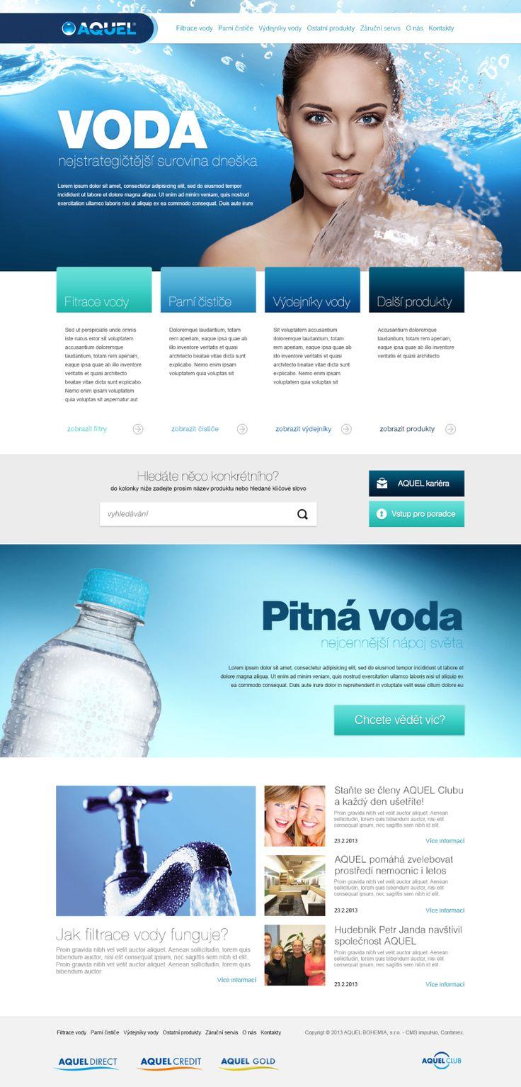 Aquel 2013 #webdesign