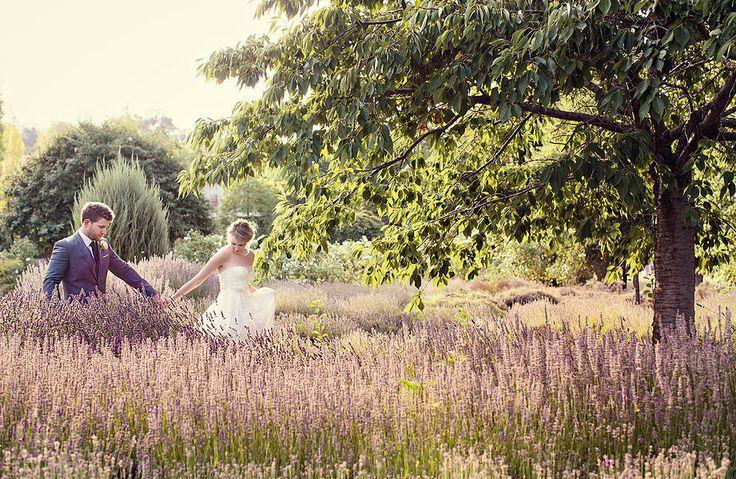 photos of bride and groom at Lavandula wedding Daylesford by fotojojo