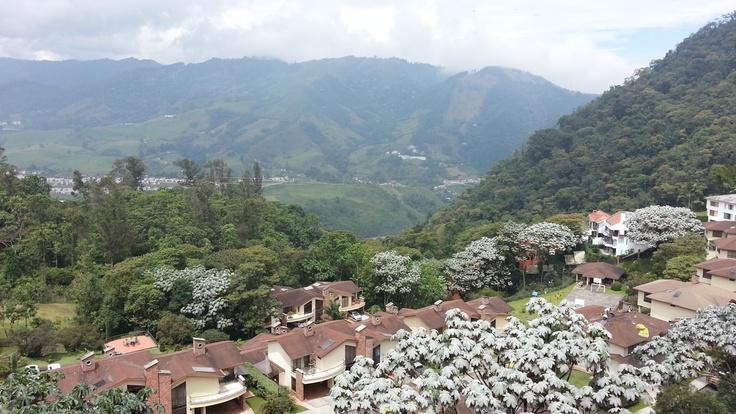 Vista Palermo