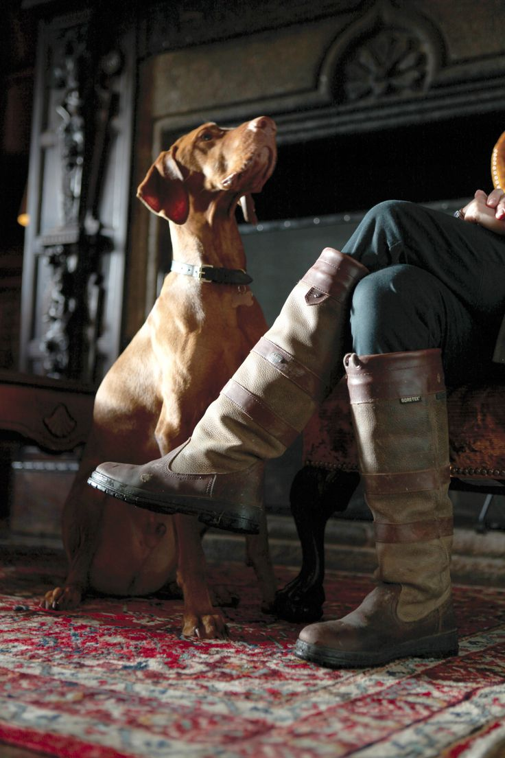 Dubarry boots and a dog, a good combination for long walks in the woods!