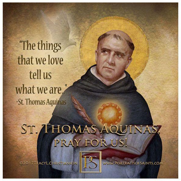 Pin By Rebeca Rodrigues On The Church Saint Quotes Catholic Thomas Aquinas Saint Thomas Aquinas
