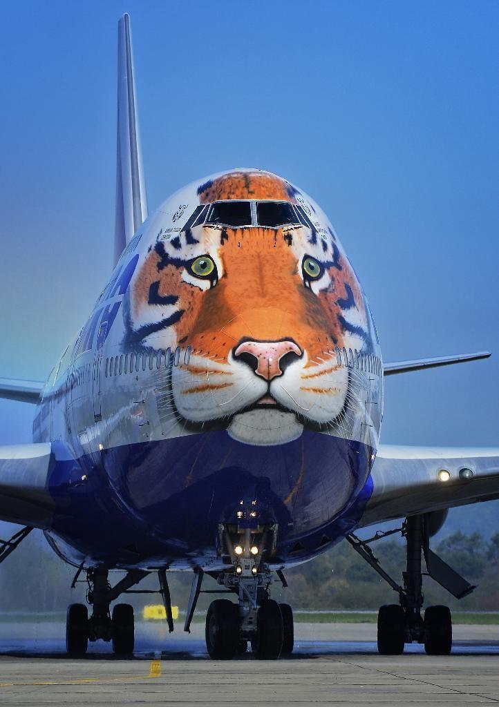 Смешные самолеты фото картинки