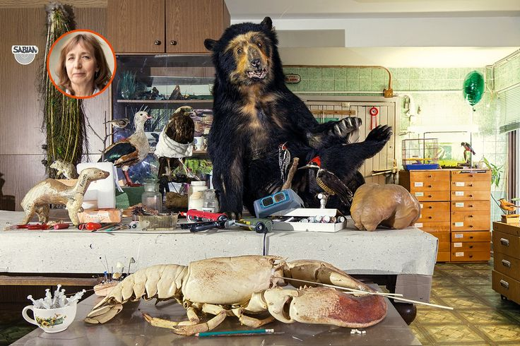A taxidermist's work place: a stuffed bear and stuffed birds, a huge lobster and a cute cup full of syringes: well, plenty of weird tacidermy