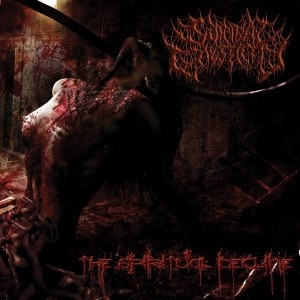 SUICIDAL CAUSTICITY - The Spiritual Decline (2013) | Putridzone - Only brutal