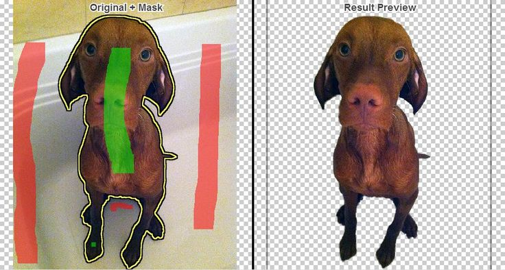 Clipping Magic- a great tool that makes it easy to edit background objects out of your images. Clipping Magic allows you to erase all of the background from an image so that the only thing left is the person, animal, or object that is the centerpiece of your image