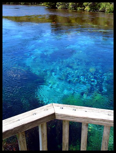 "pupu springs - the clearest and supposedly ""cleanest"" water in the world. not a #dream"