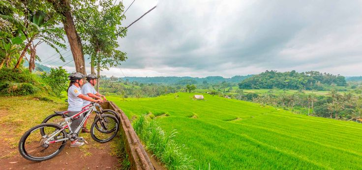 Explore Ubud off the beaten track on this gentle cycling tour, when staying at Alila Ubud. Visit the traditional Payangan market where you can buy spices and fresh fruit to try. Soak in the spectacular views of verdant rice terraces as you meander past Balinese temples and local family compounds.