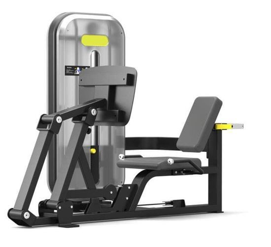 Seated Leg Press   No equipment workout, Home workout ...