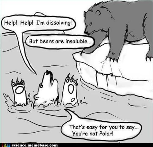funny science news experiments memes - How Did That Non Polar Bear Get Up There?
