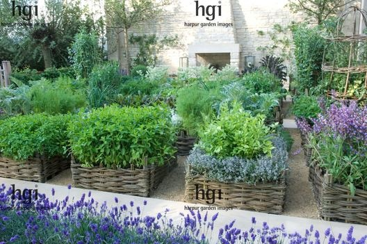 potager and herb garden. raised beds in wicker