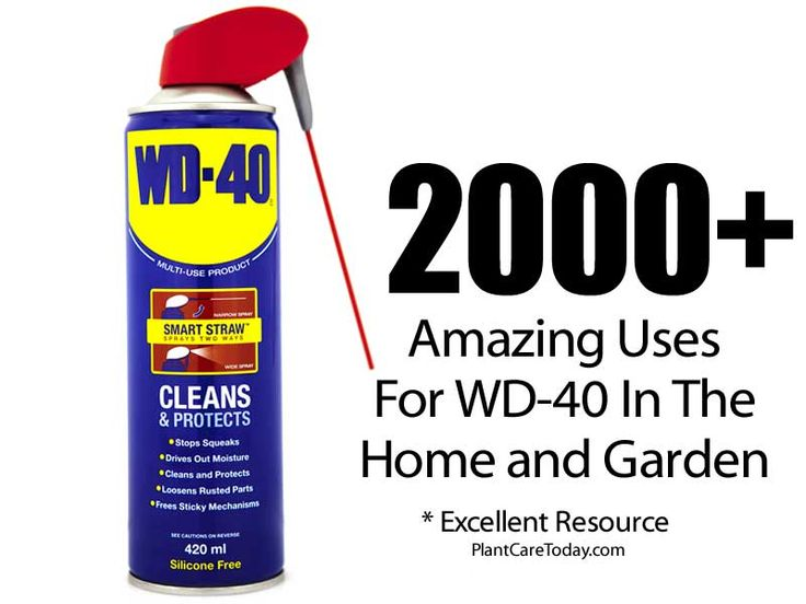 2000 + Amazing Uses For WD-40 In The Home and Garden -
