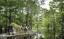 Descubra por que o passeio de canoa pelos Everglades, na Flórida, é imperdível.