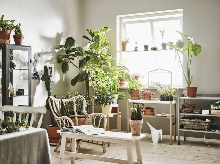 25 beste ideeà n over bamboe meubels op pinterest bamboe bamboe
