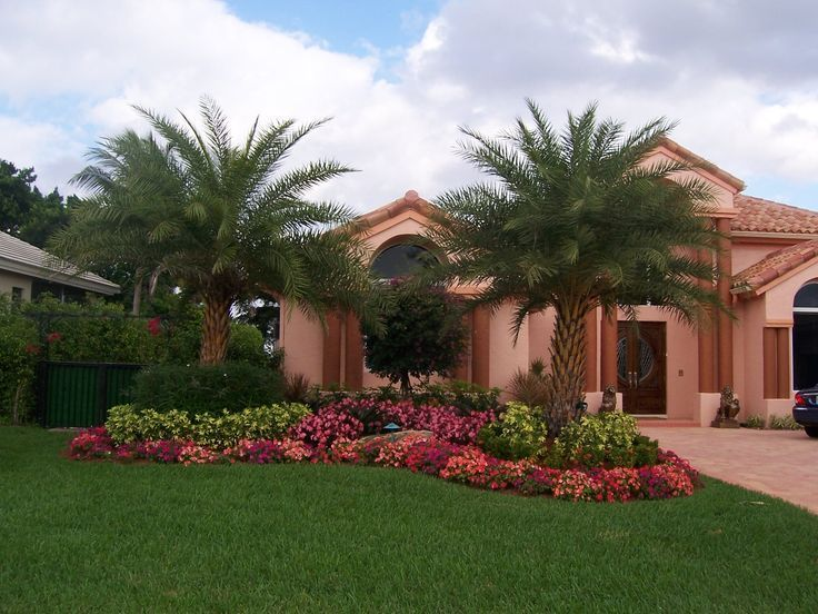 Curb appeal landscaping tropical images of florida for Tropical landscape