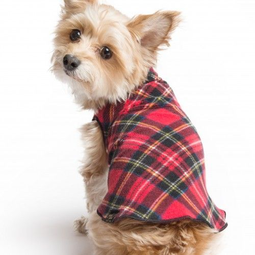 Gold Paw Series-Family run dogwear company making fleece pullovers, waterproof coats, stretchy material.