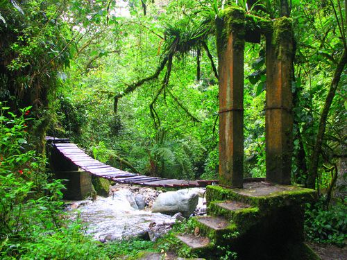 Valle de la Corocora, Salento, Colombia (by headlessmonk)