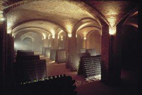Tra le #visite più suggestive da fare in #Piemonte c'è sicuramente quella delle #cantine, dove invecchiano #vini di altissima qualità
