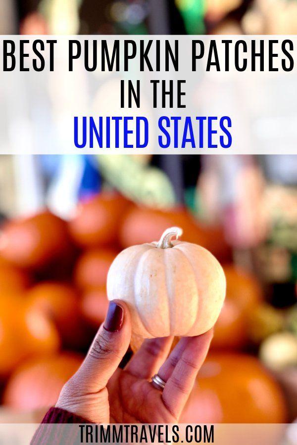 It S Pumpkin Picking Time Crisp Air Pumpkin Spice And Candy Corn Signals The Fall Season In 2020 Canada Travel Guide Fall Travel Destination Usa Travel Destinations