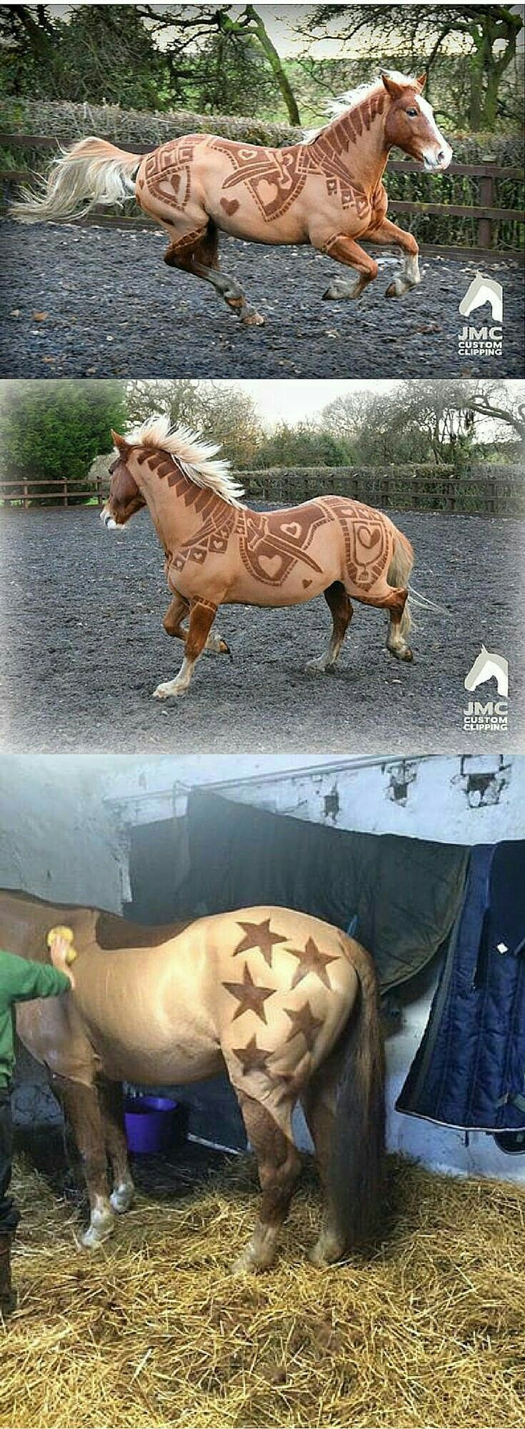 Beautiful clipping jobs!! My horse is seal bay, so they wouldn't show up as well on her though