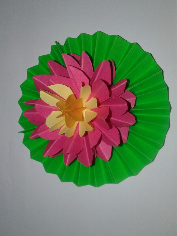 These lotus is made with color papers.