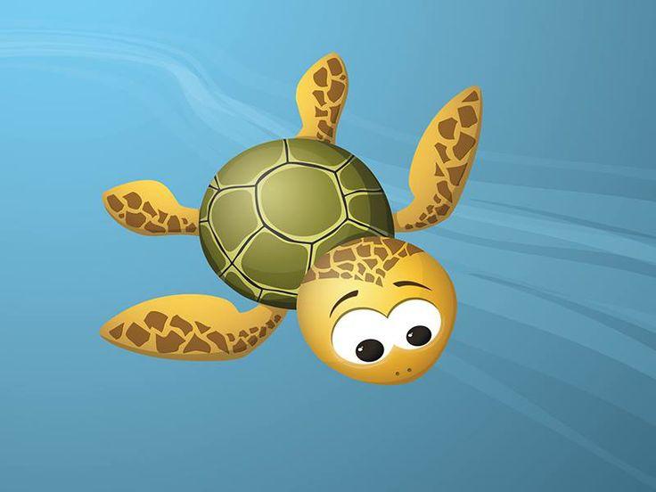 turtle Kate
