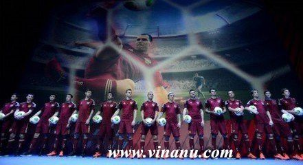 Russia national football team, 2014