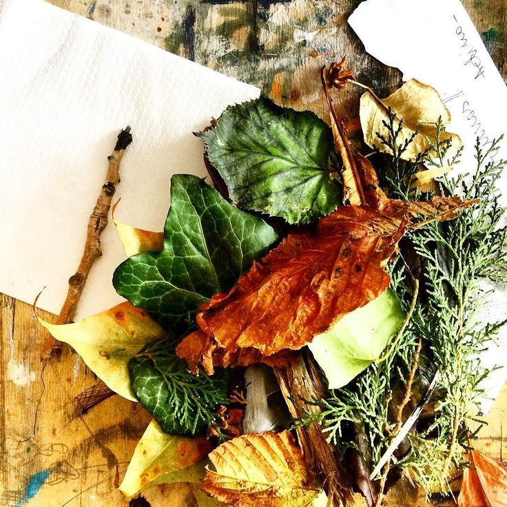 Cool autumn  display...found it today at work on art studio. #fall #autumn #leaves #TagsForLikes #falltime #season #seasons #instafall #instagood #TFLers #instaautumn #photooftheday #leaf #foliage #colorful #orange #red #autumnweather #fallweather #nature