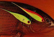 Fotos de pesca con mosca de Marcelo Morales | Fly dreamers