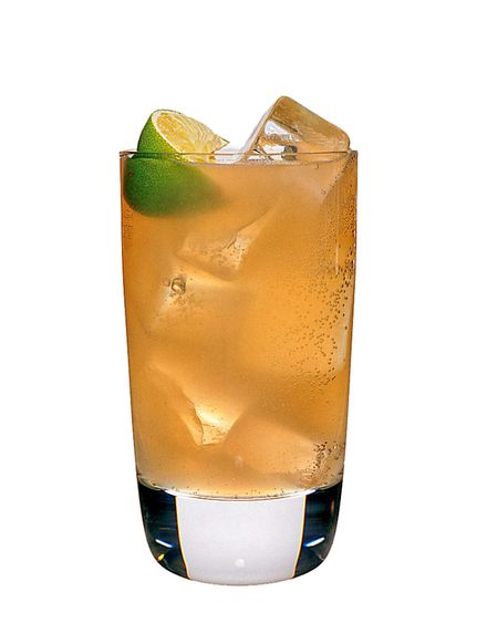 to make a mexican mule use patron reposado tequila, freshly squeezed lime juice, sugar syrup (2 sugar to 1 water), gosling's stormy ginger beer and garnish with