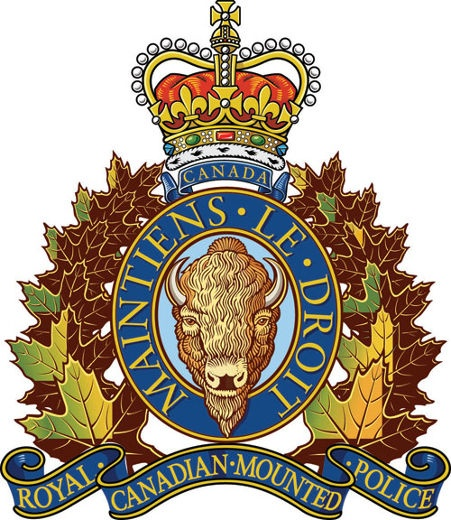 the arms used by the police in canada For sale – firearms & deactivated firearms except for bodyguards for politicians and for a few police in canada we are supposed to call 911 and wait.
